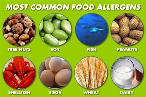 Most Common Food Allergens Tree Nuts, soy, fish, peanuts, shellfish, eggs, wheat, dairy
