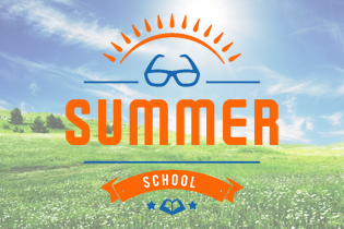 Virtual Summer School 2020